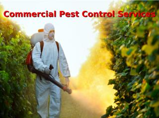 commercial pest control services.ppt
