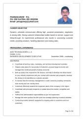 CV-PMSP.docx