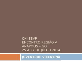 CNJ SSVP 2014 Silvio.pptx