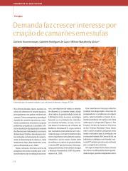 DEMANDA FAZ CRESCER INTERESSE POR CRIAÇOES DEB CAMAROES EM ESTUFAS.pdf